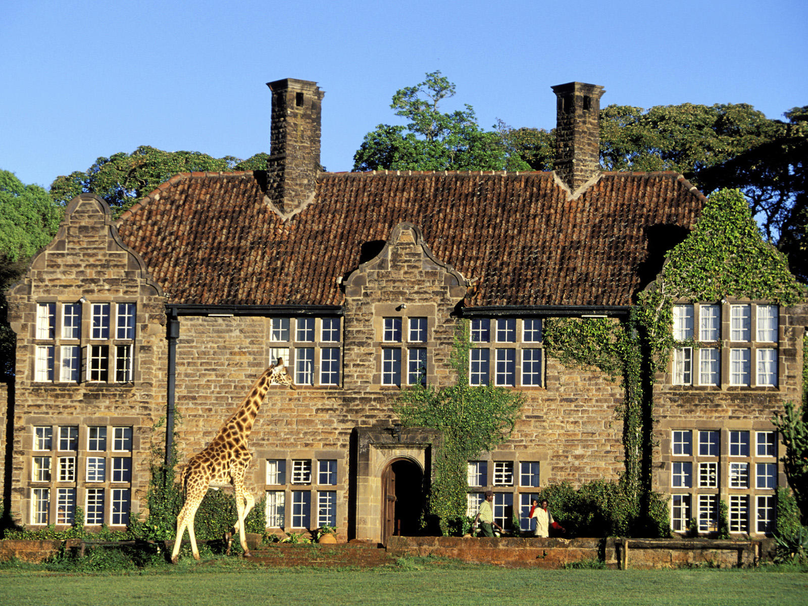 giraffe-manor-nairobi-room-suggestion