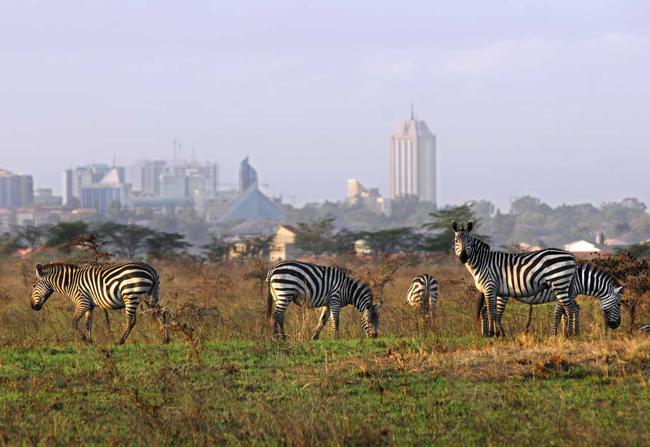 nairobi-national-park-city-safari