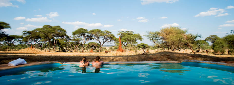 sanctuary-swala-tanzania-pool